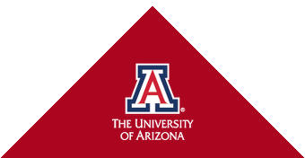The University of Arizona red triangle graphic