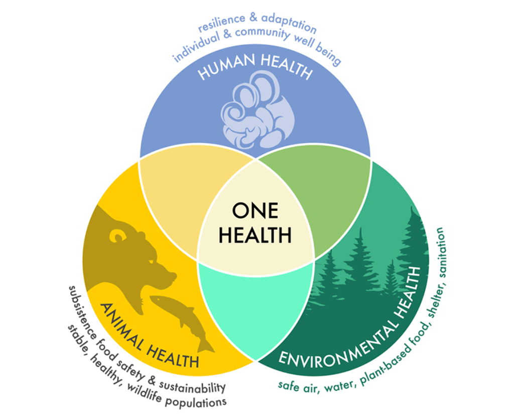 Image credit: UNIVERSITY OF ALASKA FAIRBANKS https://www.uaf.edu/onehealth